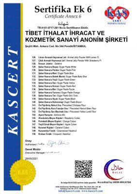 261-tibet-EK6_page-0001